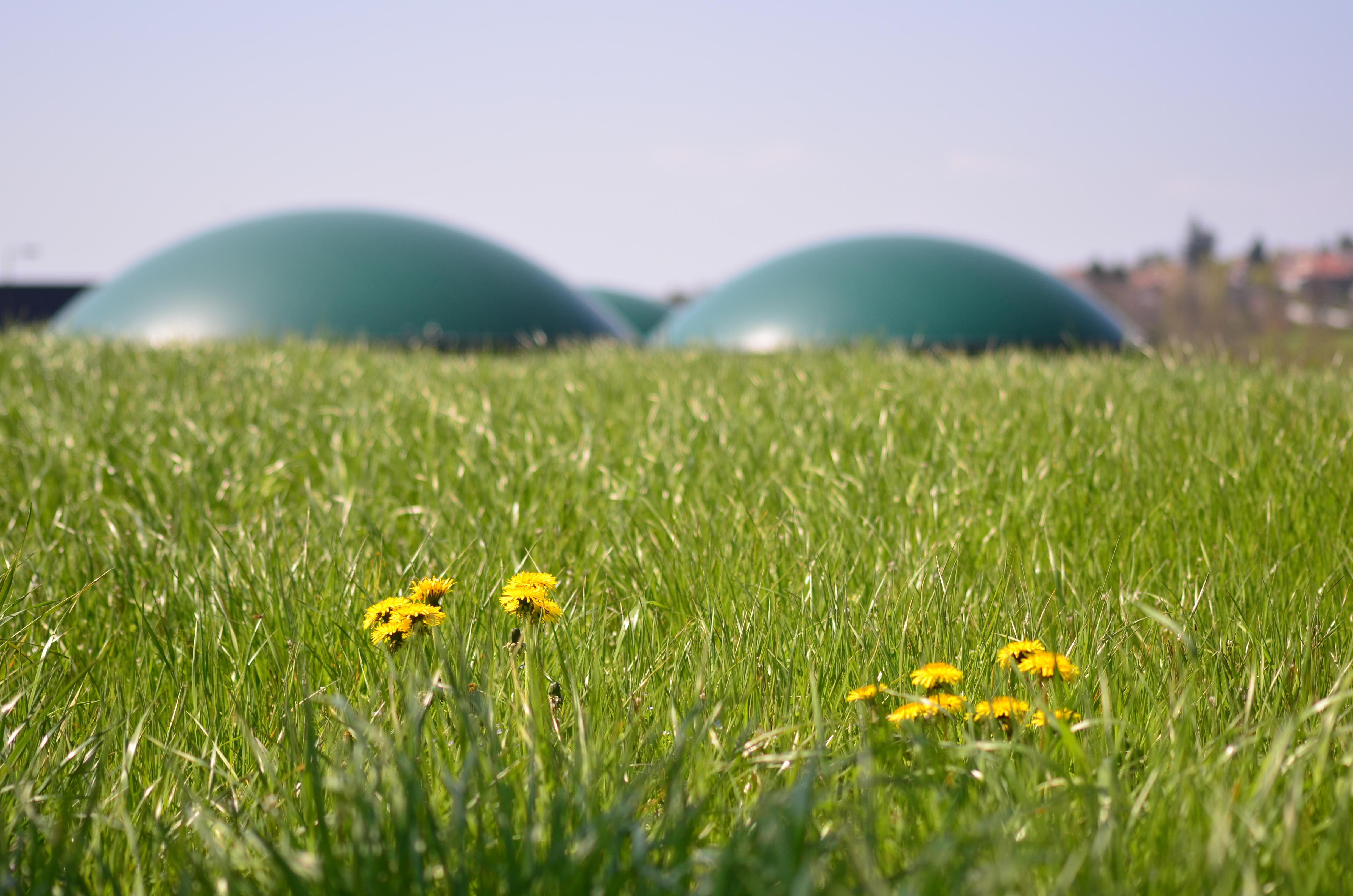 Un appel à contribution de paysagistes concepteurs pour favoriser la transition énergétique